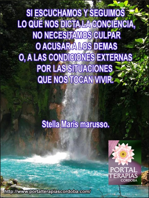 articulos para crecer facebookSTELLA MARIS copia